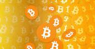 bitcoin-cash-network-logo